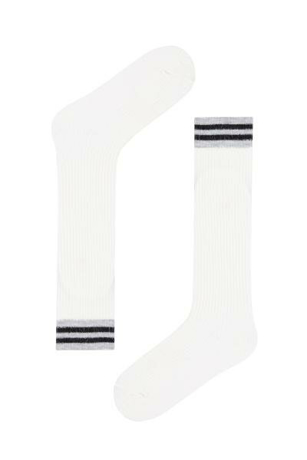 Picture of G.BASIC STRIPE PNT